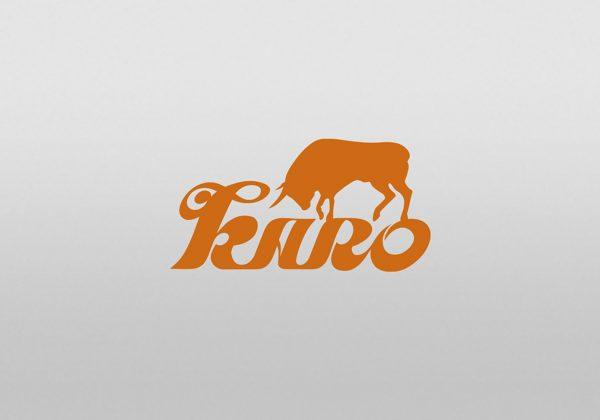 Návrh logotypu karo